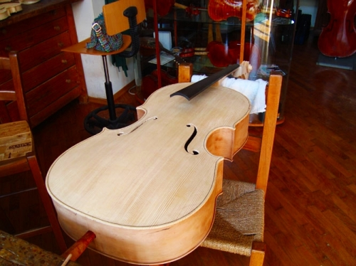 Cello In Creation